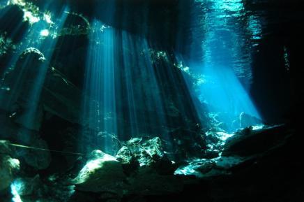 diving111