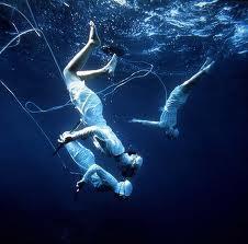 images toba free divers